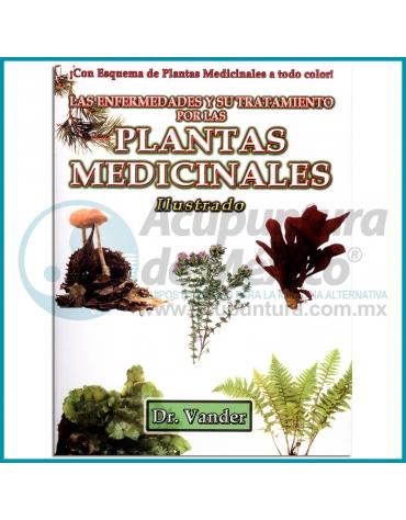 LAS ENFERMEDADES Y SU TRATAMIENTO POR LAS PLANTAS MEDICINALES