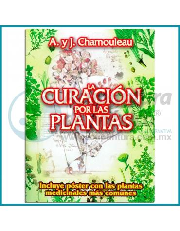 LA CURACIÓN POR LAS PLANTAS