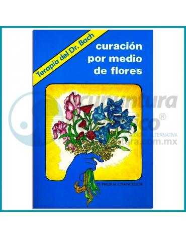 CURACIÓN POR MEDIO DE FLORES