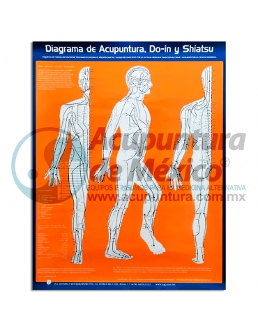 GRÁFICA - DIAGRAMA DE ACUPUNTURA DO IN Y SHIATSU