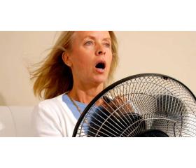 La acupuntura puede reducir los síntomas de la menopausia.